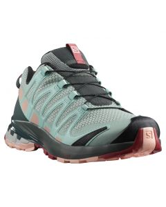 Salomon Womens XA Pro 3D Hiking Shoe