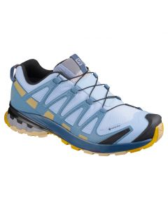 Salomon XA Pro 3D v8 GTX Womens Shoe